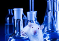 Rat-in-Lab